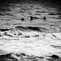 Silver Surfers by Heather Joyce Morrill