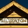 Silverton Train Station by David Lee Thompson