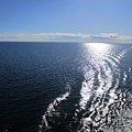 Silvery Ocean by Rosita Larsson