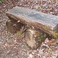 Simple Bench by Allen Nice-Webb
