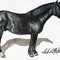 Simple Horse Portrait by Linda L Martin