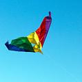 Simple Kite by Nicholas Blackwell