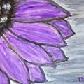 Simple Purple  by Pamula Reeves-Barker