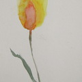 Simplest Tulip by Beverley Harper Tinsley