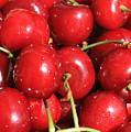 Simply Cherries  by Carol Groenen