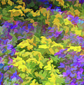Simply Soft Colorful Garden by Aimee L Maher ALM GALLERY