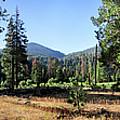 Simpson Meadow - Sierra by Bruce Lemons