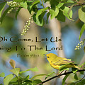 Sing To The Lord by Jayne Gohr