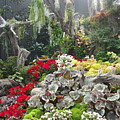 Singapore Cloud Forrest 16 by Phyllis Spoor