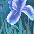 Single Iris With Buds by Felix Turner