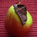 Single Pear Too by Lucyna A M Green