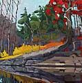 Singleton Autumn by Phil Chadwick
