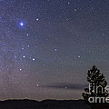 Sirius & Canis Major Rising In New by Alan Dyer