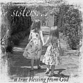 Sisters-black And White by Jean Plout