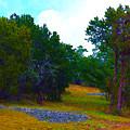 Sister's Hill Country Backyard by Robert J Sadler