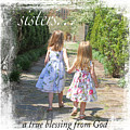 Sisters-true Blessing by Jean Plout