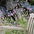 Sitting Amongst A Wildflower Garden by Sherry Hallemeier
