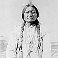 Sitting Bull, A Hunkpapa Lakota Tribal by Stocktrek Images
