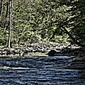 Six Mile Creek Ithaca Ny by David Lane