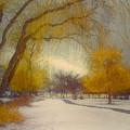 Skaha Path In Winter by Tara Turner