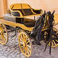 Skansen Carriage by Suzanne Luft