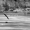 Skating On The Pond by Beth Deitrick