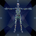 Skeletal System by Iowan Stone-Flowers