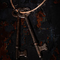 Skeleton Keys by Erin Cadigan