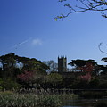 Skerries Church And Grounds by Martina Fagan