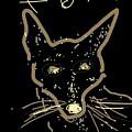 Sketch Of Fox By Kathy Barney by Kathy Barney