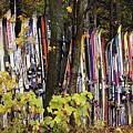 Ski Fence by Joe Epstein