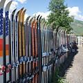 Ski Fence by Priscilla Wolfe