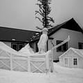 Ski Jump by Angus Hooper Iii