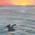 Skimming The Surface by Darlene Weaver