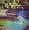 Skokomish River by Mary McInnis
