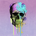 Skull 6 by Mark Ashkenazi