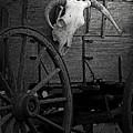 Skull And Wagon by Al Bourassa