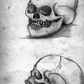 Skull Drawing by Alban Dizdari