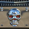 Skull License Plate by Jill Reger