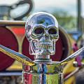 Skull Ornament by Tony Baca