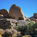 Skull Rock #2 Joshua Tree by Blake Webster