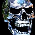 Skull Shine by Ellen Dawson