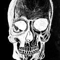 Skull Study 3 by Reed Novotny