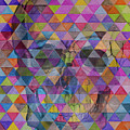 Skull Triangle by Jamie Bishop