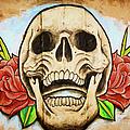 Skull by Vivian Frerichs
