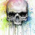 Skull Watercolor Rainbow by Olga Shvartsur