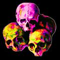 Skulls by Vicky Brago-Mitchell