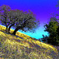 Sky Burning Blue by JoAnn SkyWatcher