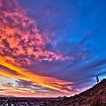 Sky Dream by Cathy Franklin