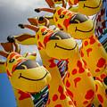 Sky Giraffes by Joann Long